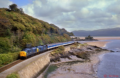 37254+37197 Picnic Island (terry.eyres) Tags: