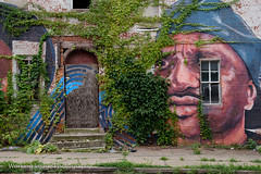 West Baltimore (Working Image Photography) Tags: murals streetart westbaltimore fujifilm xt20 abandoned overgrown decayed
