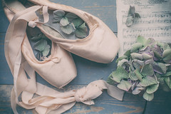 I could have danced all night... (judi may) Tags: hydrangea driedhydrangea flower balletshoes pointeshoes vintage vintagestyle flatlay stilllife tabletopphotography vignette canon5d 50mm music soft softness faded matte