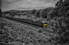 Warning (_J @BRX) Tags: 1z25 crewe scarborough scarboroughspaexpress wcrc railtour train mainline railroad railway locomotive rail heatonlodge mirfield yorkshire england uk august 2019 summer class37 type3 tractor ee englishelectric maroon 37706 37669