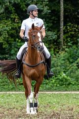 A7308378_s (AndiP66) Tags: stephanhellmüller oberkirch luzern nevada springkonkurrenz seon rvhallwil 11august2019 egliswil august 2019 pferdesporttage springen pferd horse schweiz switzerland kantonaargau cantonaargau concours wettbewerb horsejumping equestrian sports springreiten pferdespringen pferdesport sport sony sonyalpha 7markiii 7iii 7m3 a7iii alpha ilce7m3 sonyfe70300mmf4556goss fe70300mm 70300mm f4556 emount andreaspeters