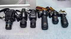 A variety of formats to choose from... (--Kei--) Tags: fuji fujifilm fujixe3 mamiya mamiyasekor fujinon fujinonxf50140mmf28 rz67 rz67professional rz67proii 645 645af 645afd m645 1000s 150mmf28a mamiya150mmf28 mamiyaa150mmf28 120mmf4macro 80200mm 80200mmf28 nikon80200mmf28 afnikkor80200mm28 d810 nikon d5300