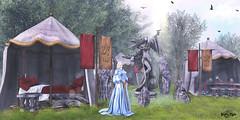 #102 -Lady Halcon (Yvain Vayandar) Tags: enchantment event kingarthur secondlife sl magic fantasy medieval roleplay lady halcon fairy infinity lorien hilted fabia fashiowl roawenwood titans oldworld pukerainbows krescendo moonsha {anc}