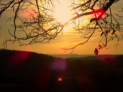 Sunset (Yvo_Ri) Tags: sunset sonnenuntergang nature natur spring frühling sun sonne felder fields home heimat love sony baum tree aussicht view forest wald landschaft landscape gimp
