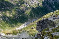 Abwärts (sMäc) Tags: wandern zervreilahorn hiking valsertal valserrhein berge mountains zervreila vals alpen