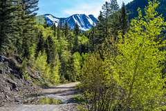 LaPlataCanyon_143 (allen ramlow) Tags: la plata canyon colorado landscape scenic nature outdoor mountain road sony alpha a7iii
