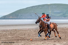 Beach Polo, Brean Sands 2 (stagenutuk) Tags: polo beachpolo brean breansands horse horses game games chukka chukkas chukker chukkers somerset beach nikon70200f28 nikond500