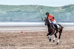 Beach Polo, Brean Sands 7 (stagenutuk) Tags: polo beachpolo brean breansands horse horses game games chukka chukkas chukker chukkers somerset beach nikon70200f28 nikond500
