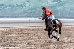Beach Polo, Brean Sands 8 (stagenutuk) Tags: polo beachpolo brean breansands horse horses game games chukka chukkas chukker chukkers somerset beach nikon70200f28 nikond500