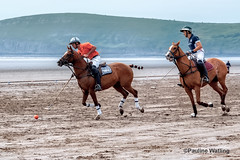Beach Polo, Brean Sands 13 (stagenutuk) Tags: polo beachpolo brean breansands horse horses game games chukka chukkas chukker chukkers somerset beach nikon70200f28 nikond500