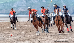 Beach Polo, Brean Sands 14 (stagenutuk) Tags: polo beachpolo brean breansands horse horses game games chukka chukkas chukker chukkers somerset beach nikon70200f28 nikond500