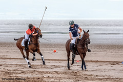 Beach Polo, Brean Sands 17 (stagenutuk) Tags: polo beachpolo brean breansands horse horses game games chukka chukkas chukker chukkers somerset beach nikon70200f28 nikond500