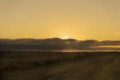(Celeste Saez) Tags: campo landscape sunset sunshine sun paisaje cielo sky moody