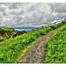 Castlerock NIR - Downhill