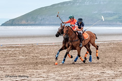 Beach Polo, Brean Sands 1 (stagenutuk) Tags: polo beachpolo brean breansands horse horses game games chukka chukkas chukker chukkers somerset beach nikon70200f28 nikond500