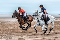 Beach Polo, Brean Sands 5 (stagenutuk) Tags: polo beachpolo brean breansands horse horses game games chukka chukkas chukker chukkers somerset beach nikon70200f28 nikond500