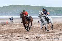 Beach Polo, Brean Sands 6 (stagenutuk) Tags: polo beachpolo brean breansands horse horses game games chukka chukkas chukker chukkers somerset beach nikon70200f28 nikond500