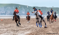 Beach Polo, Brean Sands 16 (stagenutuk) Tags: polo beachpolo brean breansands horse horses game games chukka chukkas chukker chukkers somerset beach nikon70200f28 nikond500