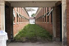 Alley (dramamath) Tags: 119picturesin2019 alleys illinoisstatefair