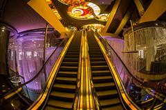 Runway Baby (Thomas Hawk) Tags: chandelierbar clarkcounty cosmopolitan cosmopolitanhotel cosmopolitanlasvegas hotel lasvegas nevada thecosmopolitanhotel thecosmopolitanoflasvegas usa unitedstates unitedstatesofamerica vegas bar escalator fav10 fav25