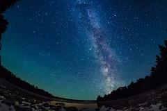 Going down the memory lane (Sean X. Liu) Tags: brucepeninsula nightphotography galaxy milkyway longexposure ontario nationalpark