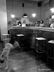IMG_1378bzwSmall (hubert.doms) Tags: belgium mechelen malines stad stadszichten grotemarkt dijle duivelshuis korenmarkt bruul vismarkt kunstencentrumnona nona nonamechelen ikamechelen ika