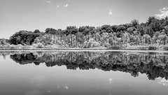 Reflection, Hess Lake near Baroda (mswan777) Tags: outdoor water still quiet scenic sky cloud wood forest shore lake hess baroda michigan apple iphone iphoneography mobile monochrome ansel black white
