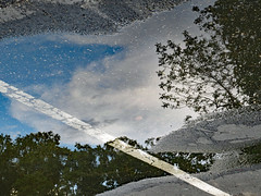 Summer Scene Reflected In A Puddle. (dccradio) Tags: lumberton nc northcarolina robesoncounty outdoor outside sky nature natural tree trees branch branches treebranch treebranches canon powershot elph 520hs august friday evening fridayevening goodevening parkinglot paved pavement reflection puddle rainpuddle ground