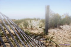 Foggy Dunes. (venturalorenzo47) Tags: fantasticnature worldtrekker photographymypassion fineartphotos
