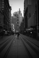 Sydney (Bill Thoo) Tags: sydney nsw newsouthwales georgestreet australia landscape city urban street monochrome bnw bw blackandwhite blackandwhitefilm film analog analogue filmcamera 35mm 35mmfilm 35mmfilmcamera 50mm 5014 lecia m4 leciam4 canonltm canonltm5014 ltm leicathreadmount ei25 iso25 kodak kodak2238 2238