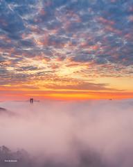 San Francisco foggy morning (davidyuweb) Tags: low fog sanfrancisco goldengatebridge 三藩市 sunrise sunrisecolors