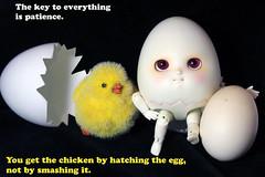 Indeed (bentwhisker) Tags: doll bjd resin anthro egg soom neoangelregion humptydumpty 9825