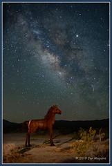 The Horse and the Stars 9460-4 (maguire33@verizon.net) Tags: anzaborregodesertstatepark borregosprings california lll milkyway ricardobreceda galaxy metalart stars