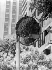 Taxi in Mirror (RunnyInHongKong) Tags: hc110solutionb mediumformat film akasaka chuzenji opticfilm120 japan mamiya645protl rolleiretro400s selfdevelop blackwhite minatoku vuescan mamiyasekor110mmf28 tokyo 6x45