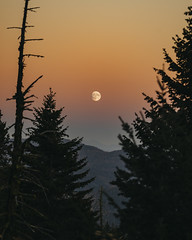 Hello Moon (JeffAmantea) Tags: moon sunset forest trees mountains layers fall autumn rossland range bc british columbia kootenay kootenays canada pnw colour sony alpha sonyalpha a7ii emount mirrorless 70200mm f4