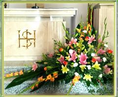 Siedkiska 02 (ks.r.jablonski) Tags: siedliska ryszard bóg wiara religia jezus kwiaty przyroda natura
