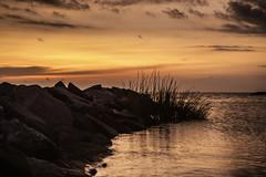 2019-08-16-BC beach flowers147-Editsmall (LIGHTSTALKER 13) Tags: beach baycreek capecharles virginia sunset sky