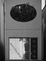 Crane with Oval (Nick Condon) Tags: architecture asakusa blackandwhite concrete crane japan olympus45mm olympusem10 plants reflection tokyo urban wall window