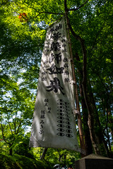 Tohoku Trip 2019-200 (just zis guy, you know) Tags: hiraizumi 平泉町 chūsonji 中尊寺 chusonji temple buddhist tree