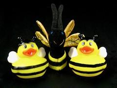 National Honey Bee Awareness Day - Third Saturday in August, 8/17 (muffett68 ☺ heidi ☺) Tags: 29365 adad aduckaday odc lookonthebrightside nationalhoneybeeawarenessday honeybee ducky yellow fingerpuppet smileonsaturday beeautiful