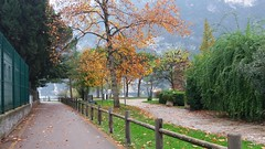 Riva del Garda (Eternally Forgotten) Tags: trentino welschtirol italy italia italien italian province region trento trient rivadelgarda garda lake autumn autumnal fall colours park green trees falling leaves orange municipality breeze mild calm peace serenity tranquillity alone beautiful charming simple feelings journey travel tourism trip discovery voyage adventure exploring hiking wandering magic spell enchanting memories recollections lovely dreams melancholy yearning nostalgia reminiscence city north volunteering