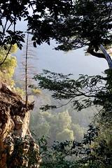 Equilibrio (joaquin.solino) Tags: paisaje regióndelmaule chile radal7tazas