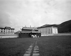 1425 (The Dent.) Tags: mamiya 7ii kodak tmax tmaxdev 14 6mins china tibet kham filmphotography mediumformat