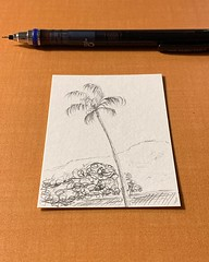 Saw an actual cloud hiding behind a palm tree on the way to dinner. #10minsbeforebed #doodle #urbansketch #pencil #drawing #doitfortheprocess #carveouttimeforart