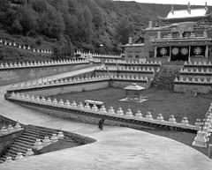1427 (The Dent.) Tags: mamiya 7ii kodak tmax tmaxdev 14 6mins china tibet kham filmphotography mediumformat