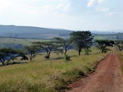 Umgeni Valley Nature Reserve (Proteus_XYZ) Tags: southafrica kwazulunatal howick umgenivalley naturereserve
