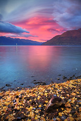 Autumn Shores At Sunrise || LAKE WAKATIPU || QUEENSTOWN NZ (rhyspope) Tags: nz new zealand newzealand queenstown sunrise lake lakewakatipu autumn fall foliage leaves nature mountains clouds color colour rhys pope rhyspope canon 5d mkii