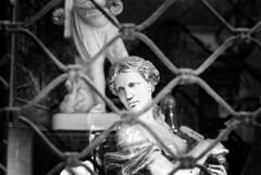 Kind of tight (Nikos.K.) Tags: 2019 athens greece film 135 blackandwhite bw homebrewdeveloper d23 ilfordfp4125 expiredfilm statue bars olympusom2n zuiko50mm18