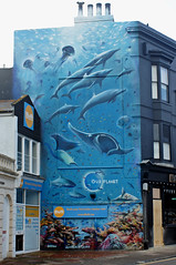 Our Planet Mural, Brighton (Robert Sarjant) Tags: brighton streetart mural ourplanet jimvision