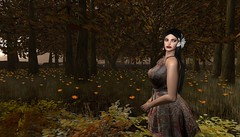 fields of autumn (Shylah Oceanlane) Tags: autumn field nature avatar secondlife sl